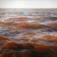 El artista de la luz, Matthew Cornell