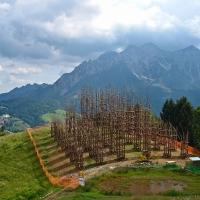 ¿Una catedral realizada con árboles?. Arquitectura y Naturaleza
