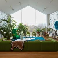 ¿Podemos vivir sin plantas en casa?
